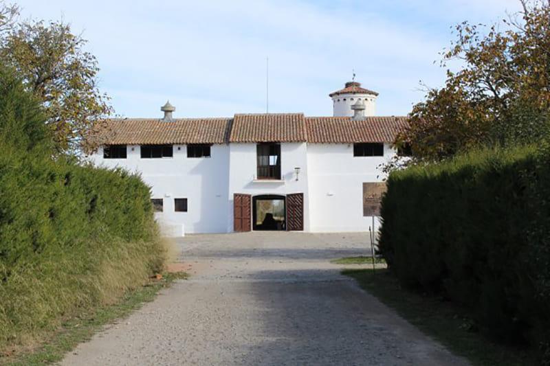XIXO-CASTAÑO4-2.jpg